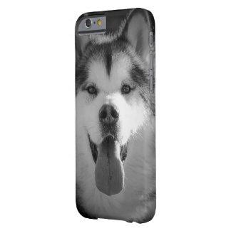 Smiling malamute phone cover