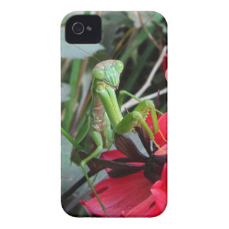 Smiling Mantis ~ BlackBerry Bold CaseMate Barely Case-Mate iPhone 4 Cases