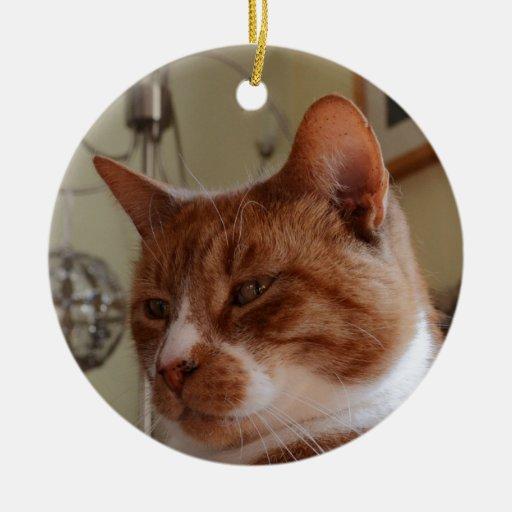 Smiling Nutmeg. Christmas Tree Ornaments