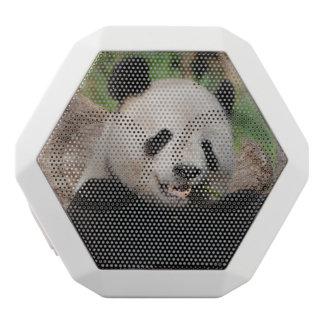 Smiling Panda Bear White Boombot Rex Bluetooth Speaker