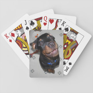 Smiling Rottweiler Puppy Playing Cards
