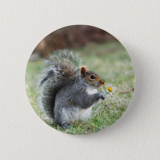 smiling squirrel with daisy 6 cm round badge