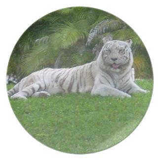 Smiling Tiger Dinner Plate