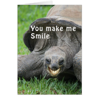 Smiling Tortoise Thinking of you card