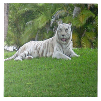 Smiling White Tiger and Palm Trees Tile