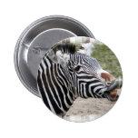 Smiling Zebra Button