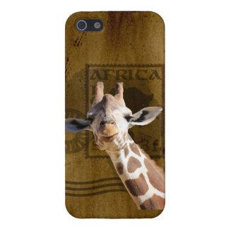 Smirk Giraffe Stamp iPhone 5/5S Cases