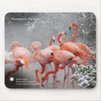Smithsonian | Flamingos In The Snow Mouse Pad