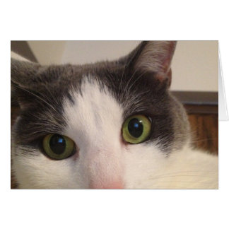 Smokey Cat Eyes Card