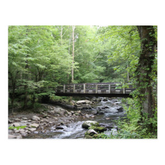 Smokey Mountain Creek Postcard