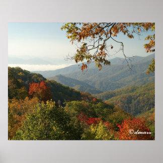 Smoky Mountain Autumn Foliage Poster