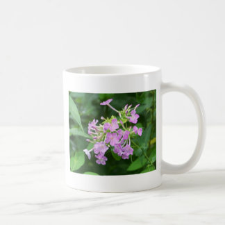 Smoky Mountain Flowers Coffee Mugs