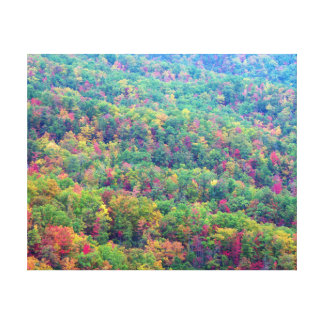 Smoky Mountain in Autumn Canvas Print