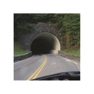 Smoky Mountain Tunnel Wood Wall Decor