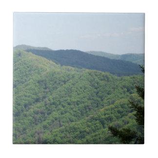 Smoky Mountains Trivet Tile 1