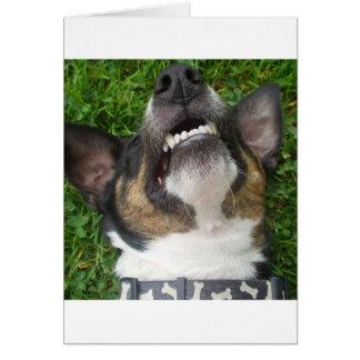smooth fox terrier chillin card
