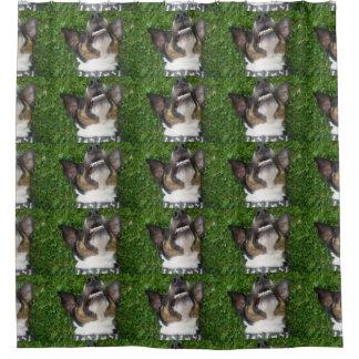 smooth fox terrier chillin shower curtain
