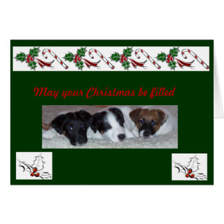 Smooth Fox Terrier Christmas cards