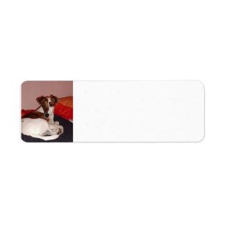 smooth fox terrier laying return address label