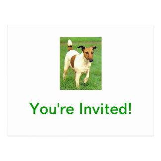 Smooth Fox Terrier Postcard