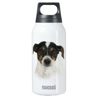 Smooth Fox Terrier 10 Oz Insulated SIGG Thermos Water Bottle