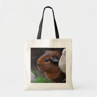 Smooth, Golden Agouti Guinea Pig Outdoors Tote Bag