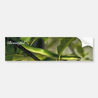 Smooth Green Snake Bumper Sticker