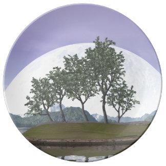 Smooth leaved elm bonsai tree - 3D render Porcelain Plates