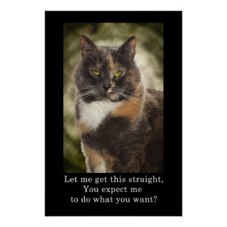 Smug Kitty - Do What You Want? Posters