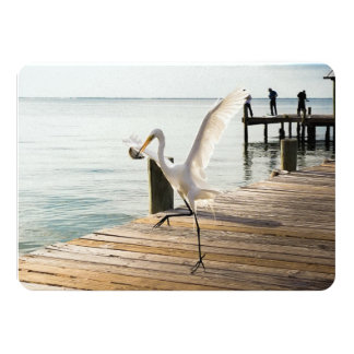 """Snack Time Great White Heron Egret Flat Note Card 4.5"""" X 6.25"""" Invitation Card"""