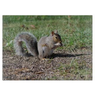 Snacking Squirrel Cutting Board