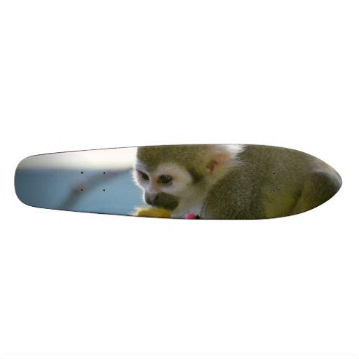 Snacking Squirrel Monkey Skate Board Deck