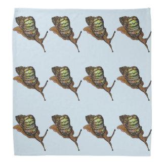 snail bandana
