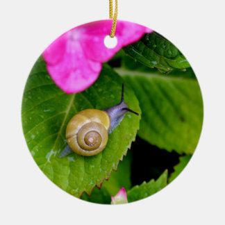 snail ceramic ornament