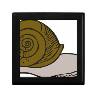 Snail Gift Box