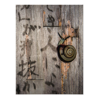Snail Mail Escargot on Asian Calligraphy Photographic Print