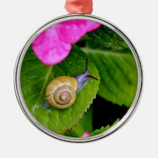snail metal ornament