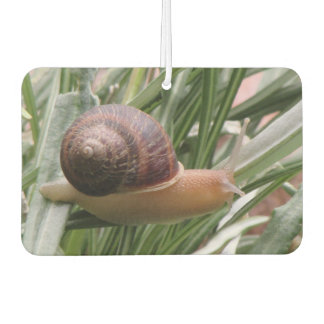 Snail on a Leaf Car Air Freshener