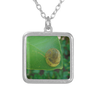 Snail on a magnolia leaf silver plated necklace