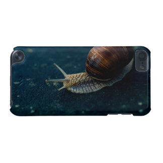 Snail On Blue Closeup, Nature Animal Photograph iPod Touch 5G Covers