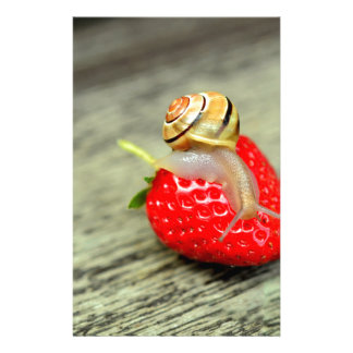 Snail on Strawberry Personalised Stationery