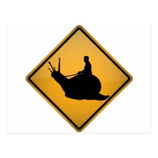 Snail Riding Postcard