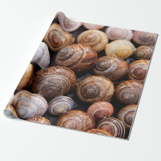 Snail shells wrapping paper