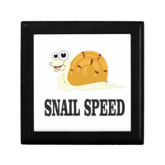 snail speed fast small square gift box