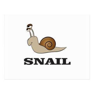 snail tale postcard