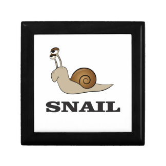 snail tale small square gift box