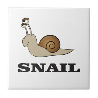 snail tale small square tile