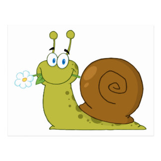 Snail With A Flower In Its Mouth Post Card