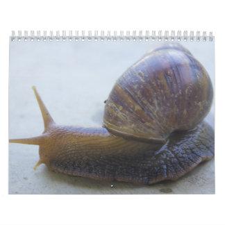 Snails Wall Calendars