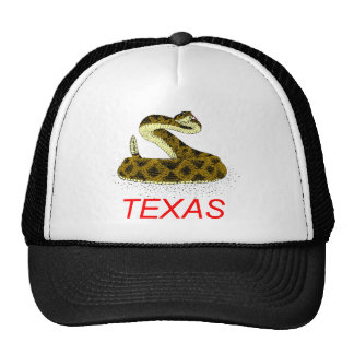 SNAKE1 CAP